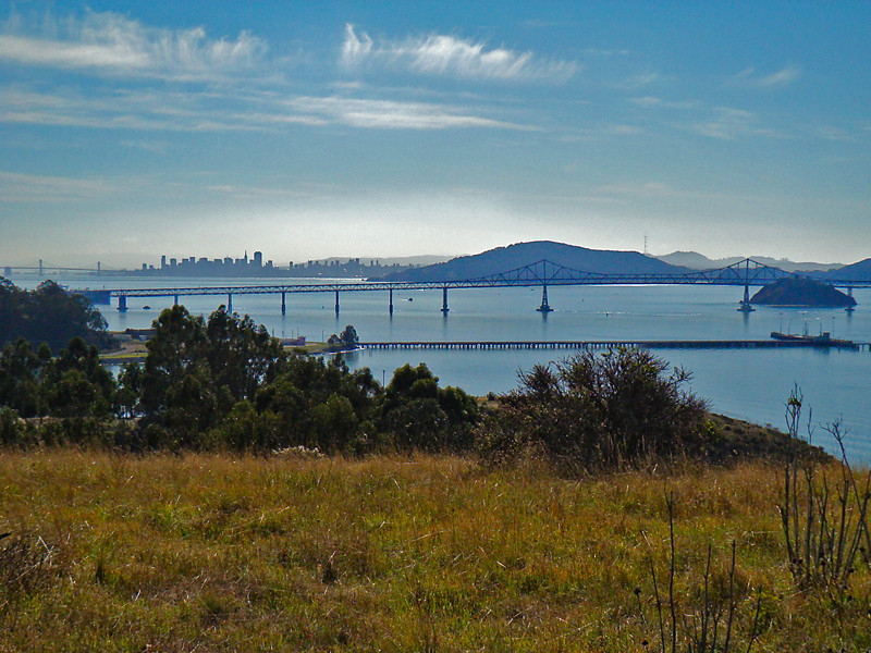 San Francisco, Angel Island, Red Rock, Richmond/San Rafael Bridge, from coastal prairie at Point Molate.<br /> CNPS field trip.  Point Molate, Contra Costa Co., CA 11/7/09