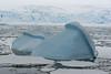 Overturned ice bergs near Palmer Station