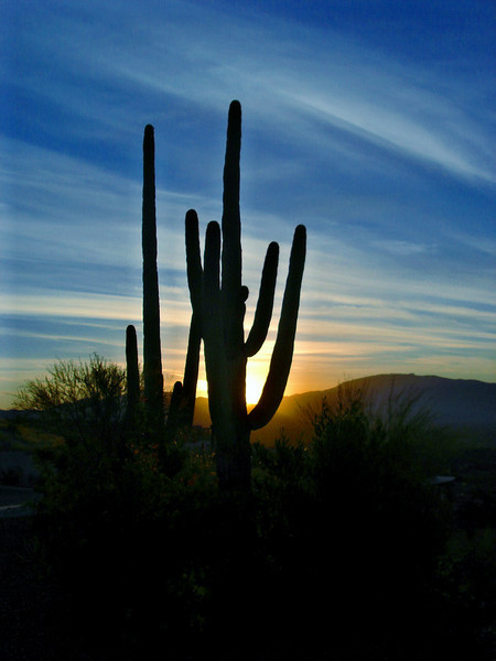 October 2006: Sunrise on Sabino Mountain.