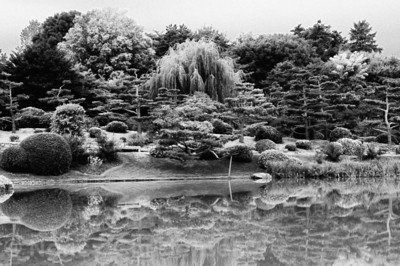Tranquil Reflections Black & White Rendition