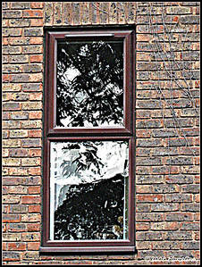 Windowrama; Stratford-on-Avon     Copyright ©2009 Florence T. Gray. This image is protected under International Copyright laws and may not be downloaded, reproduced, copied, transmitted or manipulated without written permission.