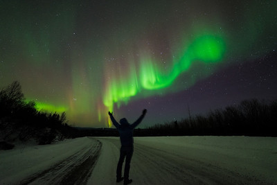 *Reaching to the Sky - Cleary Summit // Fairbanks, Alaska*