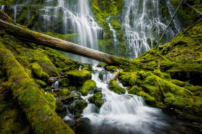 The Way You Move – Proxy Falls, Oregon