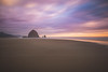 Thru the Mist – Haystack Rock // Cannon Beach, OR