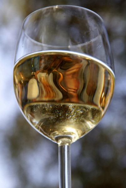 June 28, 2009. A reflection from a wine glass at the Mercuri Winery in Greece.