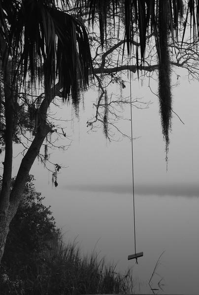 Tree Swing on the Marsh