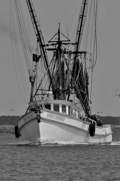 Grey Ghost Shrimp Boat Richmond Hill GA