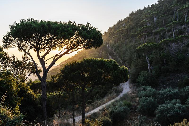 Sunset Ascent