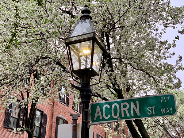 The other side of Acorn St