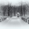 Central Park in snow storm