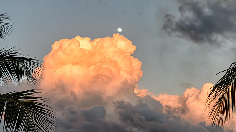 Tropical Moon Fire