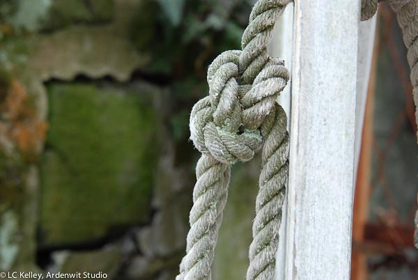 Knot a knob (Tyler Arboretum)