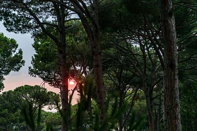 Sunset Walk in Mar Chaaya