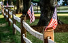 4th of July Fence