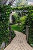 Tradewind Path