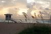 Lifeguard on Ft. Lauderdale beach