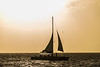 Pelican's Sail