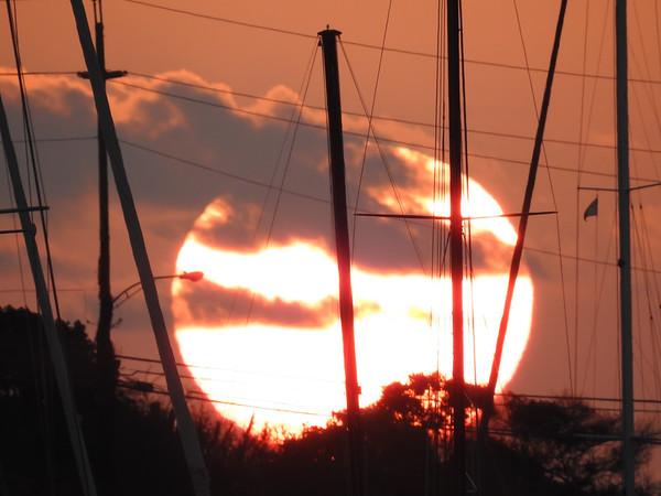 Morning Masts
