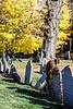 Fallen Graves