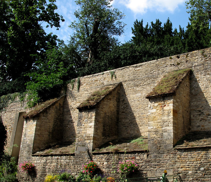 "An old wall, Cluny, France, summer time.<br /> ""Shades of France"""