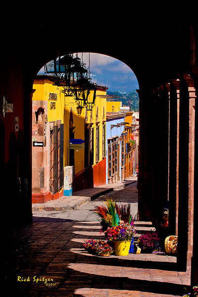 Flower Vendor in San Miguel de Allende