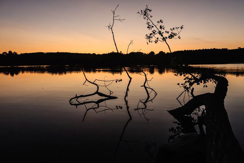 Fallen Sunset