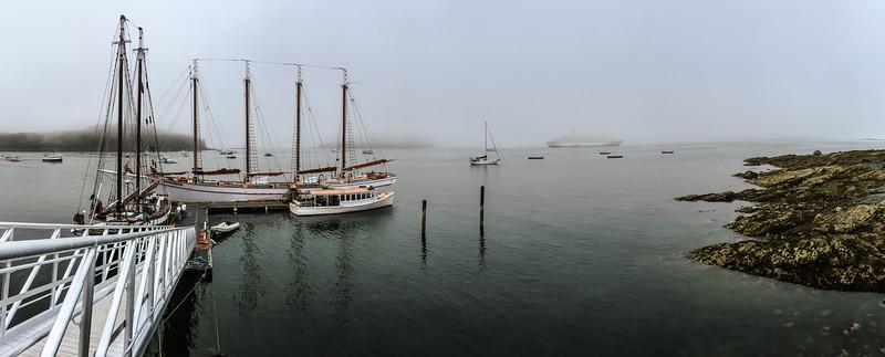 Foggy Bar Harbor
