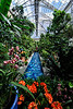 Greenhouse Paradise