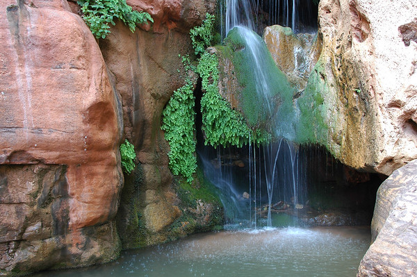 GRAND CANYON, AZ - A popular swimming hole - Elves Chasm