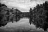 Alpine Lake, Fairfax, CA<br /> ref: 78f86ff8-8499-46f5-a1e2-8b744dc9ee41
