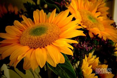 flowers252