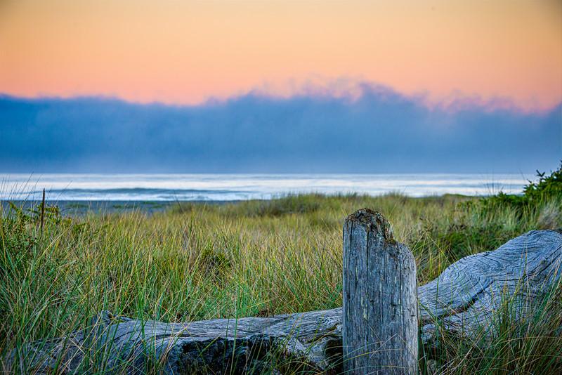 Marine Layer | Sunrise