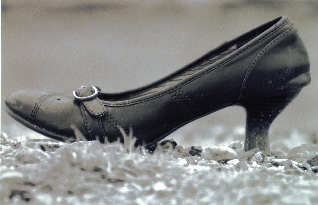 Shoe%20-%20001-XL.jpg