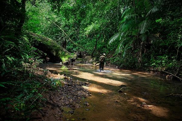 Cruces Trail, Panama