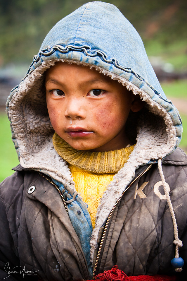 Serious Tibetan Kid looking at the camera, Shangri La, China