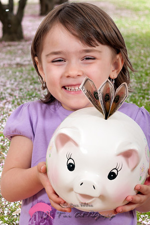 Cute little girl with dolar biils in piggy bank with a cherry blossom background.