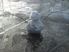 sam's meagre snowman