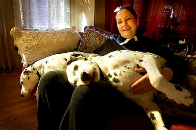 Eilene Ribbens Rohde cuddles with her two dalmatians, Calvin, right, and Sadie Potadie Princess Goddess of the Universe - Eastern Division, in her Elkhart Lake home. Press photo/Sam Castro