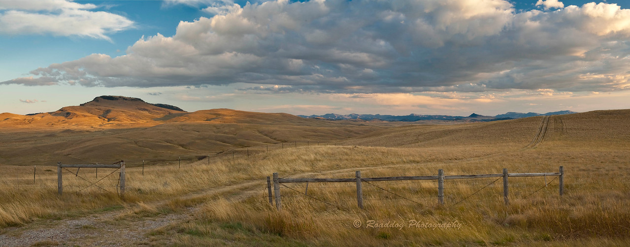 Near Simms Montana
