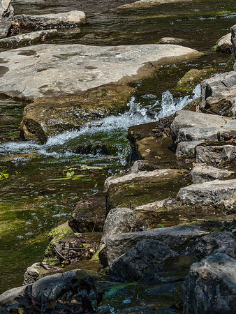 Prairie Creek Park- Richardson