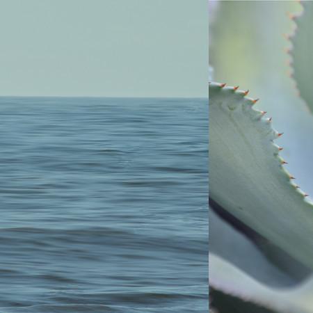 calming-winds-1-tif-f