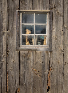 Carver's Window