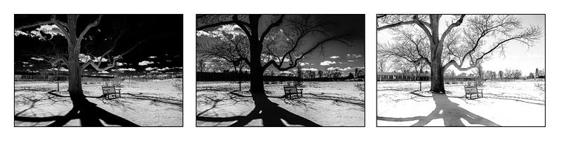 2017-03-17 Triptych: Winter shadows - 3 BW versions, 4-6