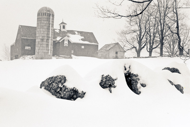 Barn from Thompson Road during snowfall