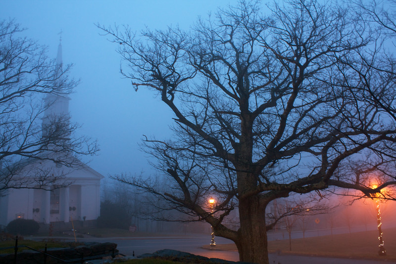 Foggy Winter Evening from the Library