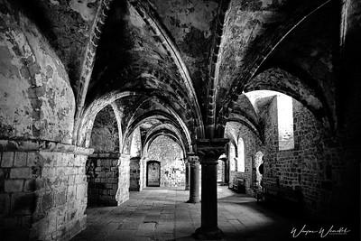 Mont_Saint_Michel_B&W_Upper_Cloister_D75_5313-0-Edit_TOPAZ