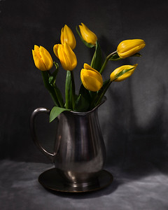 Yellow Tullips