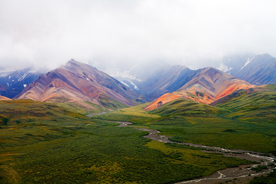 Denali National Park... Cloudy day
