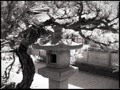 Japanese lantern in Hakone Garden, Saratoga, CA