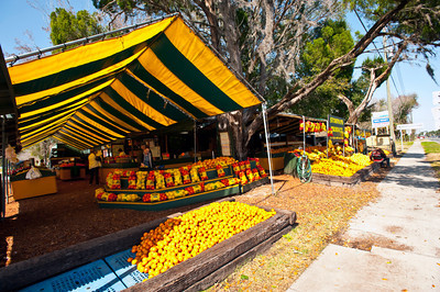 Nobody, North America, USA, Homosassa, Florida, Stormans Produce, a very large colorful roadside display of fresh fruits and vegetables along State Highway 19